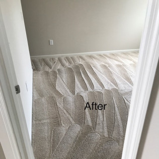 carpet cleaning in Dublin, OH
